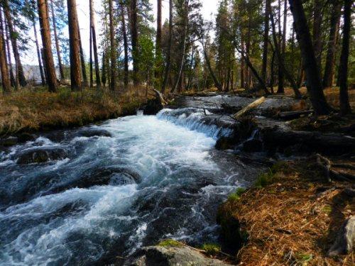 Hat Creek at Bridge Park