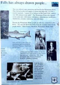 History of Lower Falls