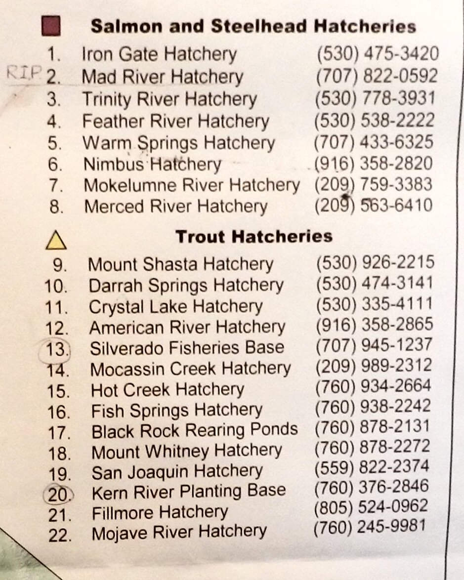 Fishing pit river country page 2 for California fish hatcheries