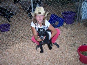 Charlie the pygmy goat