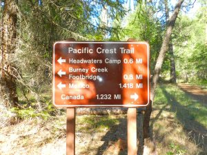 Pacific Crest Trail Sign in Burney Falls State Park