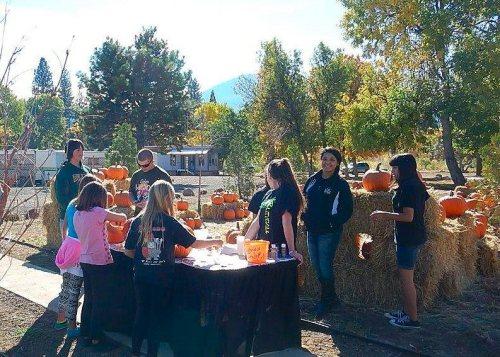 Fun and games at the pumpkin patch Photo by Jill Barnett