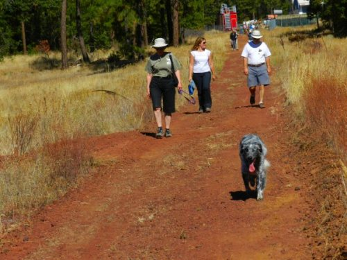 Mo and his owner Linda from Shingletown lead the way