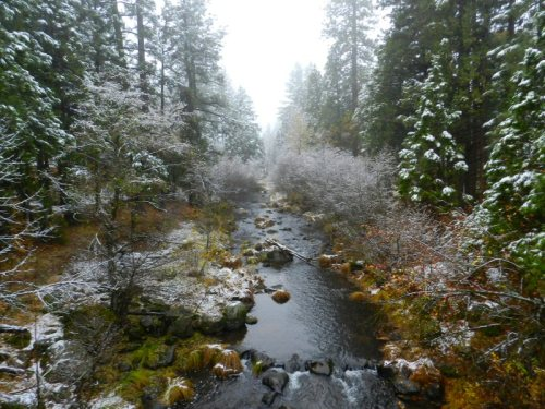 First snow on Burney Creek 2015