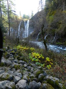 Burney Falls from down the trail (2)