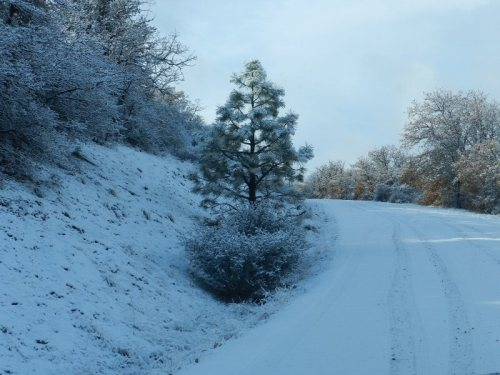 Road to PGE campground in Cassel