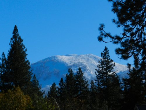 Snow on Mt. Burney