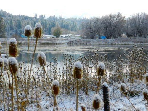 View of Crystal Lake Hatchery across Baum Lake