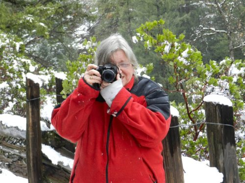 Linda may take a picture of you