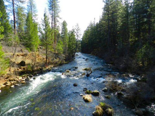 Burney Creek above the Falls