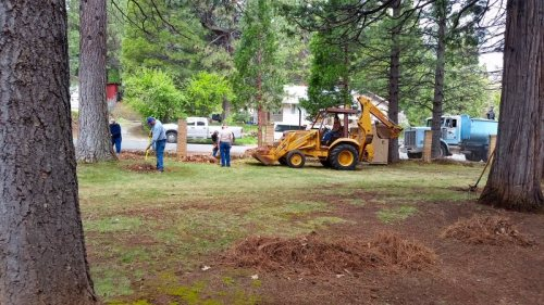 Burney Lions cleaning Burney Civic Park 2 - photo by Jim Glaser