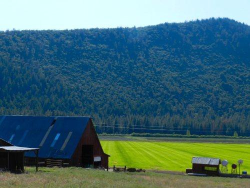 Ranch off Black Ranch Road