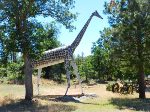 Metal giraffe in the woods