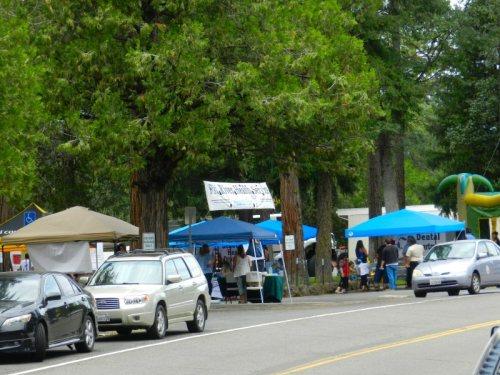 Dozens of booths at PRHS Health Fair