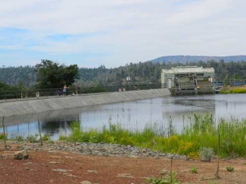 Enhanced fencing at Cassel Forebay