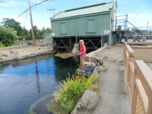 Fisherwoman from Redding fishing below Cassel Bridge on July 4