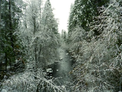 Burney Creek below the bridge