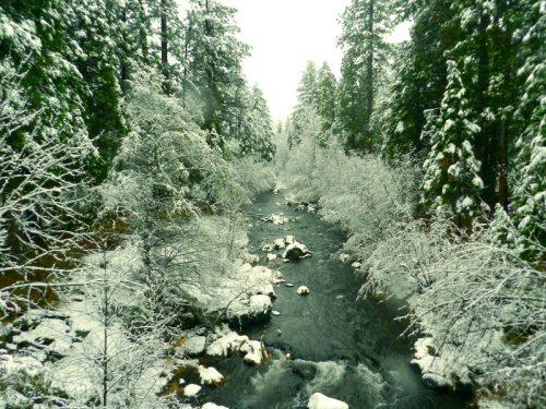 Burney Creek up creek from the bridge